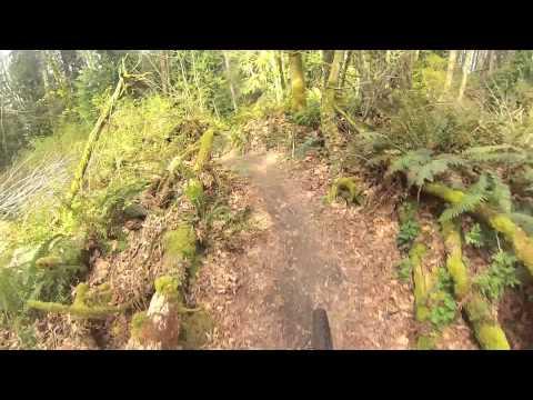 Mountain biking Japanese Gulch
