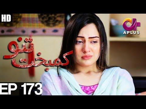 Kambakht Tanno - Episode 173  - A Plus ᴴᴰ Drama