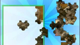 Cute Kitten Jiggy Jigsaw