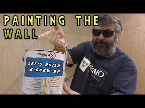 Let's Build a GROW OP - Painting the Wall