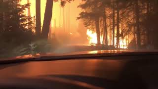 Hikers Attempt to Escape Glacier National Park Wildfire by Driving Through It