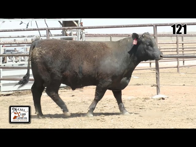 McCall Land and Cattle Lot 121