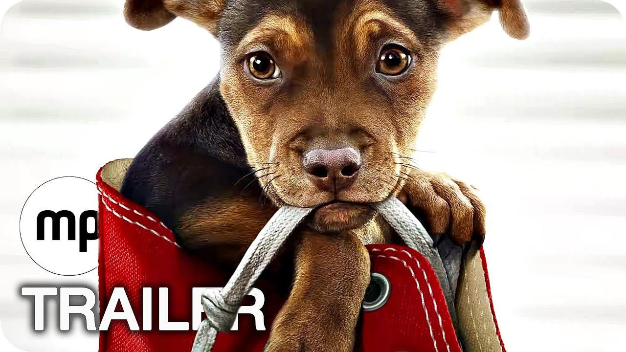 DIE UNGLAUBLICHE REISE VON BELLA Trailer Deutsch German (2019)