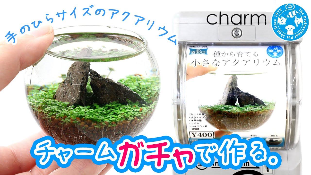 【チャーム】チャームガチャで作る。~小さなアクアリウム~charm動画