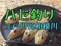 ちるチャンネル ハゼ釣り編 -江戸川&相模川-
