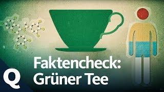 Grüner Tee hilft angeblich gegen alles – Krebs, Parkinson, Multiple...
