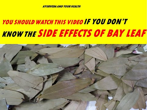 YOU SHOULD WATCH THIS VIDEO IF YOU DON'T KNOW THE SIDE EFFECTS OF BAY LEAF
