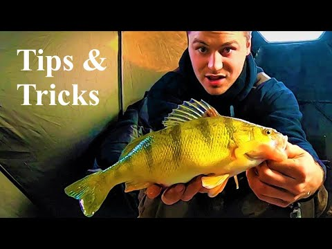How To Catch PERCH     SECRET Tips & Tricks                  Ice Fishing           204 OUTDOORS