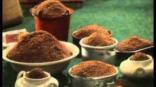 Buurman en Buurman - Kippetje Grillen