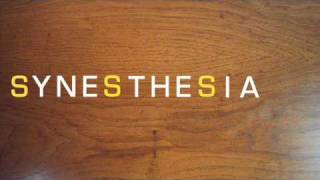 The thrillseekers - synasthesia ( The social mizfit remix )