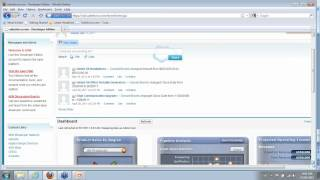 BusinessObjects OnDemand Integration with SalesForce.com - 5-17-2011