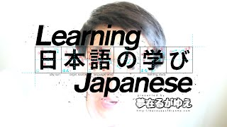 """「Learn Japanese」 Xを(している/した)NOUN as """"NOUN that has the quality of X"""""""
