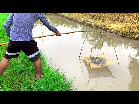 Unique Fish Trap Technique! Prawn Fish Trap By Using Bamboo With Net | River Fish Trap System