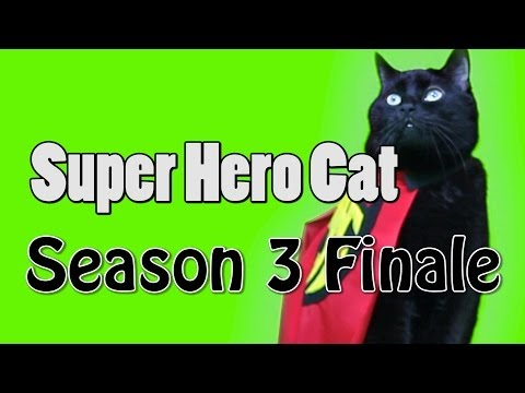 N2 the Talking Cat S3 Ep10 - Super Hero Cat Saves Kona Part 2