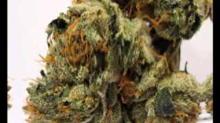 Repeat youtube video California Kush (420 Weed Song)