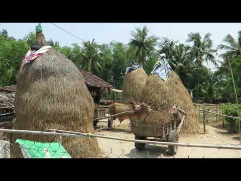 Tourism Development Binh Dinh Province