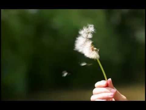 Instrumental Music-The Little Match Girl