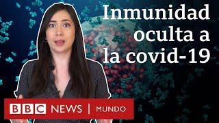 Qué son las células T y de qué forma aportan inmunidad oculta contra el covid-19 | BBC Mundo
