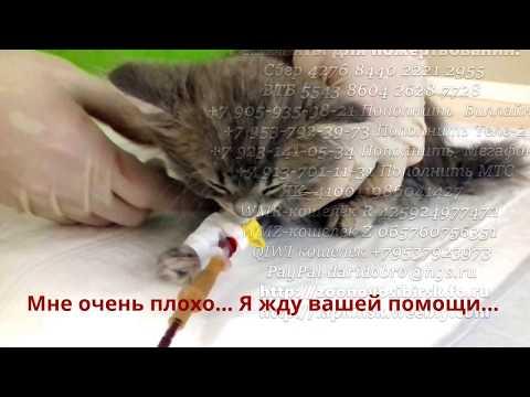 ПАО РГС БАНК, кредит, вклад, карты, БИК 044579174, г