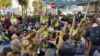 Gonflée par les gilets jaunes, la marche pour le climat a fait un carton à Pau