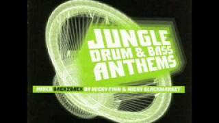 Tribe Of Issachar - Tribal Natty (Aphrodite Remix)