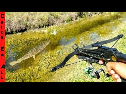 CROSSBOW Mini FISHING ROD MODIFICATION Diy CATCHES FISH!