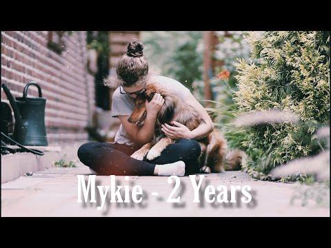 The dream of life | Mykie - 2 Years thumbnail