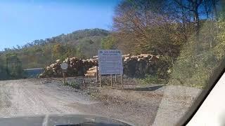 Hauling Logs to Meadows River Sawmill Ranielle WV