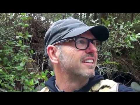 New Zealand's Best Fly Fishing  At Tongariro Lodge
