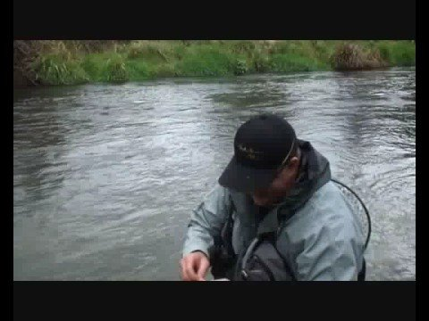 Catching And Releasing Trout On Waitahanui River