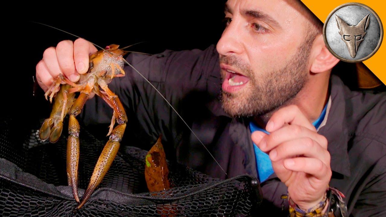 monster-river-shrimp