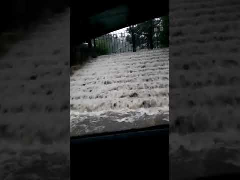Г. Зея сильный дождь