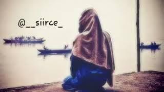 ALLAH sebr edenleri sever.