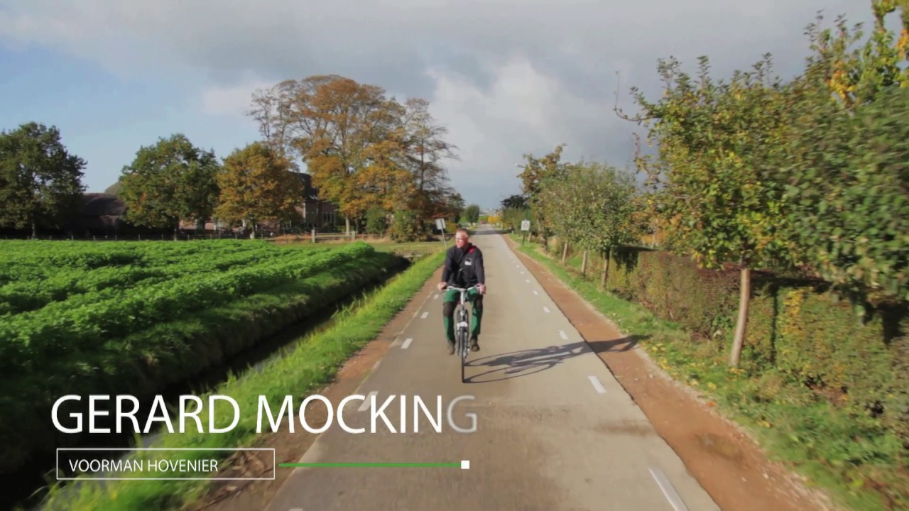 Mocking Hoveniers Stigas Mocking Hoveniers - Youtube