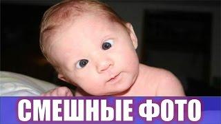 Смешные фото новые 😄 Лучшие приколы 😄 Funny faces 😄