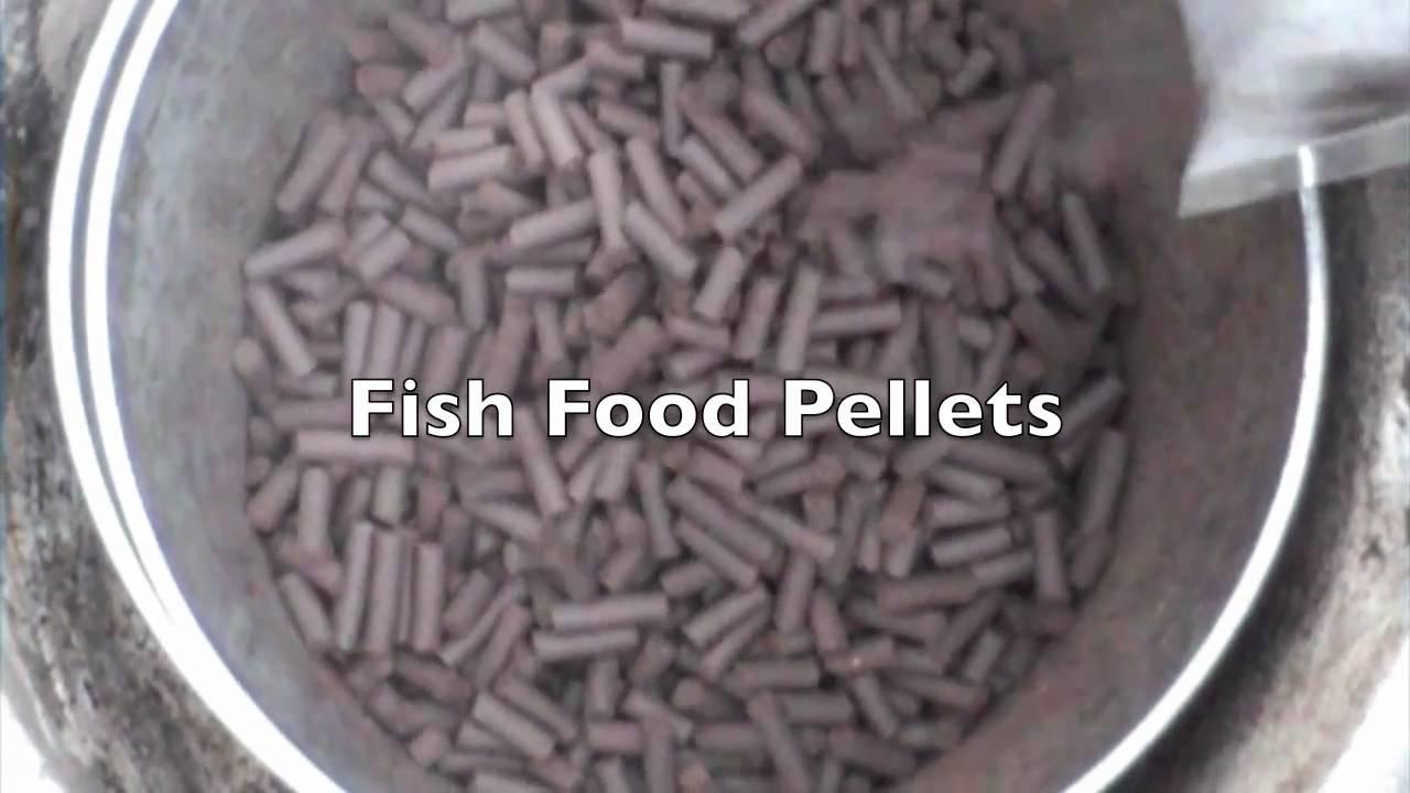 make your own animal feed fish bait pellet mill hammer mills