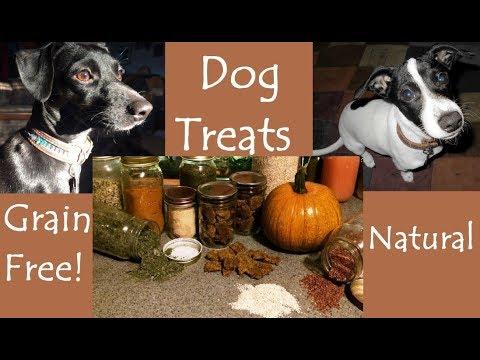 diy:-grain-free-dog-treats
