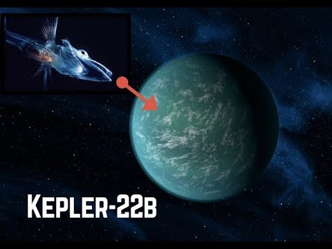 kepler 22b scientists found some mysterious creatures