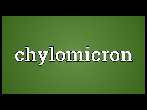Chylomicron Meaning
