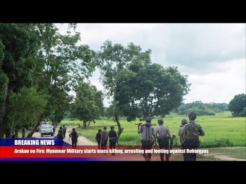 Breaking News: Myanmar Military Committing Extrajudicial Killings of Rohingyas