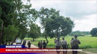 Breaking News: Myanmar Military Committing Extrajudicial Killings of Rohingyas