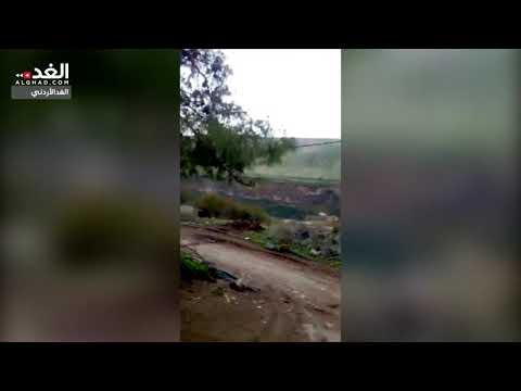 المخيبة: الخنازير الإسرائيلية تقاسم المزارعين محاصيليهم موسميا  - 15:53-2019 / 1 / 6