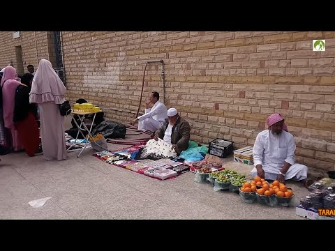 Traveling Saudi Arabia Taif City Tour By Bus Middle East