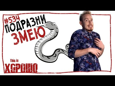 видео: This is Хорошо - Подразни змею. #534