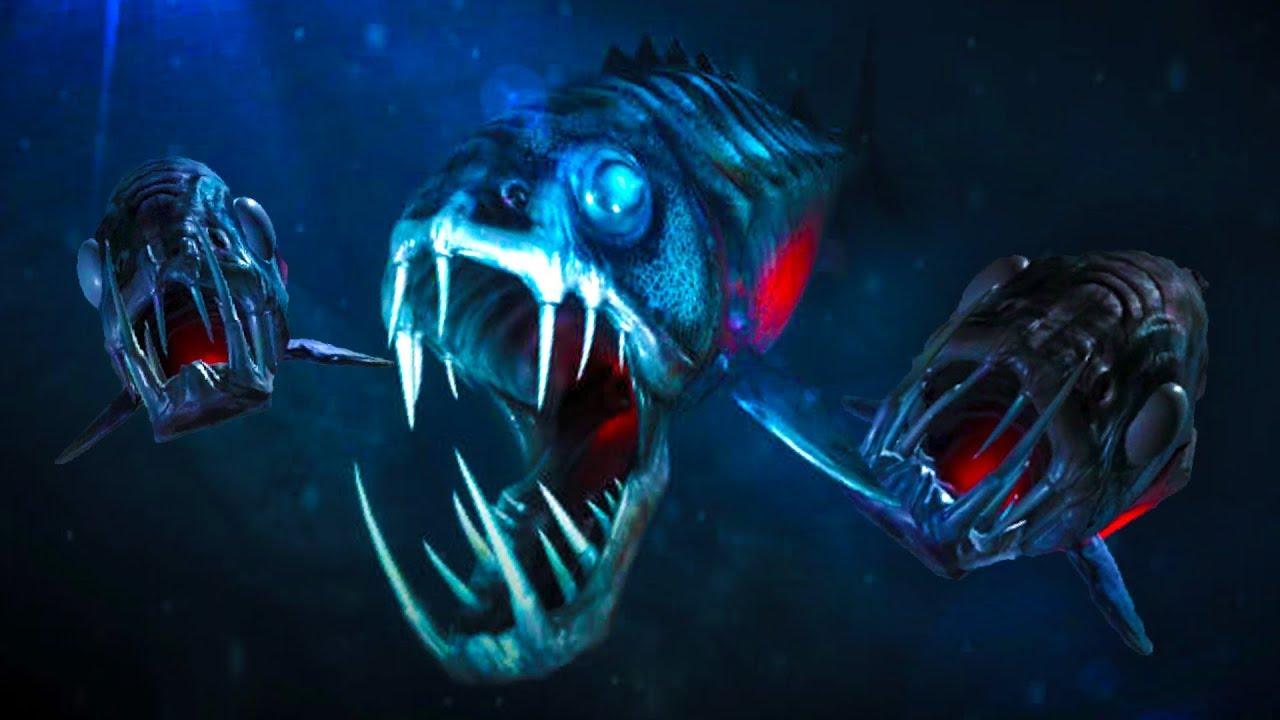 Deep dark ocean creatures