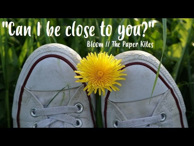 Can I Be Close To You Bloom The Paper Kites Lyrics Youtube
