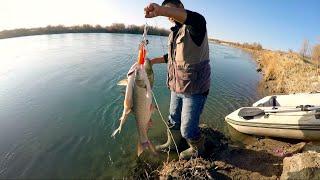 куда девать рыбу река Или новые места и лодки