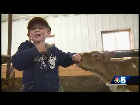 North Country dairy farmers open up about struggles