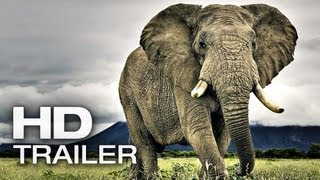 AFRICAN SAFARI 3D Trailer Deutsch German | 2013 Official Film [HD]