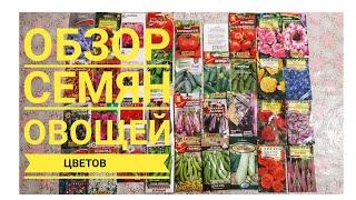 ОБЗОР СЕМЯН овощей и цветов,  которые буду сеять  Сезон 2019 года / Огород с Мариной Гусаковой